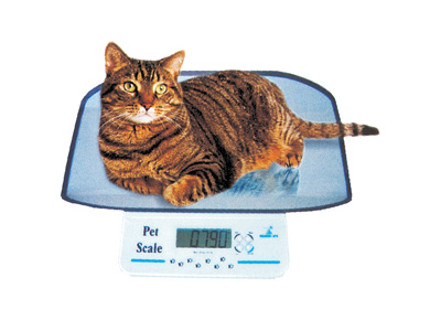 DIGITAL VET SCALE - small pets
